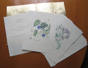 GIFT SET OF WATERCOLOURS IN GILDED FILE